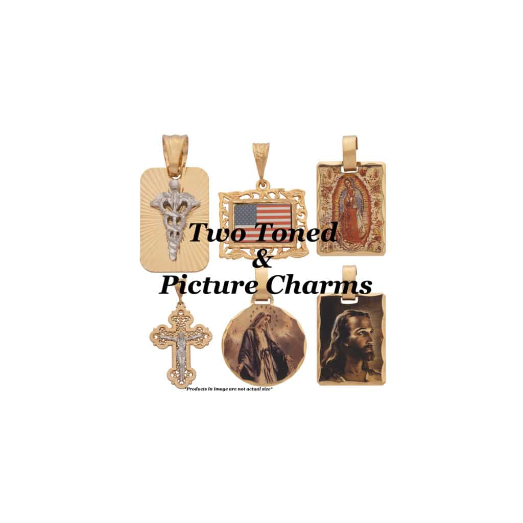 Two Toned & Picture Charms